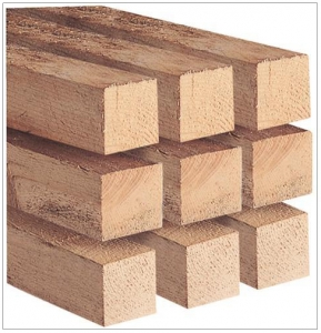 Post Timber 100x100x3000mm