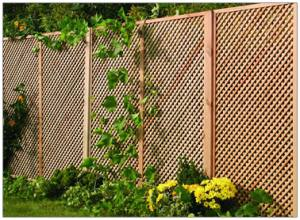 Privacy Diamond Trellis  183 x 90cm  Each