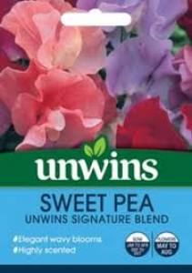 Sweet Pea Signature Blend  Per Pack