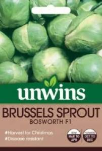 Brussels Sprout Bosworth F1  Per Pack