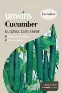 Cucumber Burpless Tasty Green   Per Pack