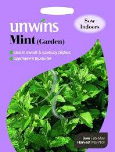 Herb Mint (Garden)  Per Pack