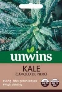 Kale Cavolo de Nero  Per Pack