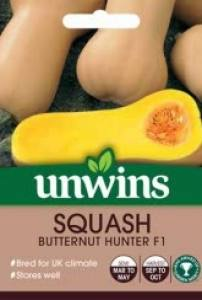 Squash (Butternut) Hunter F1  Per Pack