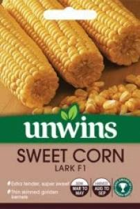Sweet Corn Lark F1  Per Pack