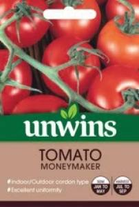 Tomato (Round) Moneymaker   Per Pack