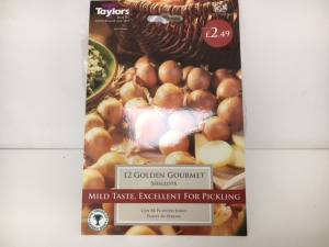 Shallot Golden Gourmet  Pack of 12
