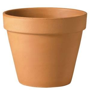 Verona Standard Pot  11x10cm  Each