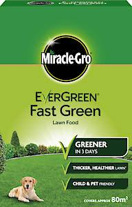 Miracle Fast Green Feed  80Sqm Each