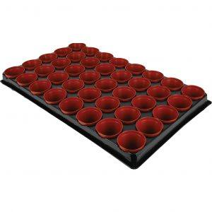 Seed and Cut Tray Inc 40 Pot
