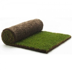 Turf Cultivated  m²