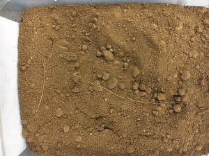 Topsoil Barn Stored   10mm   Tonne