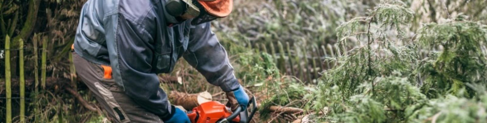 hickman brothers landscapes ltd  burford  witney  oxfordshire soft landscaping